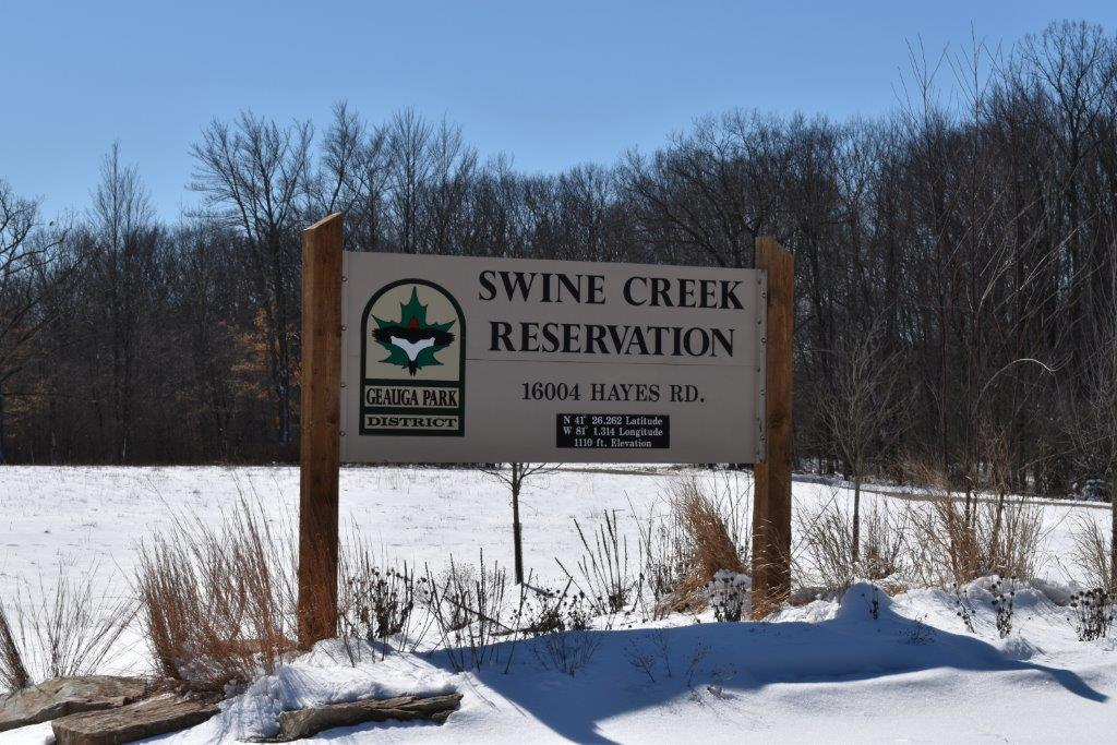 Swine Creek